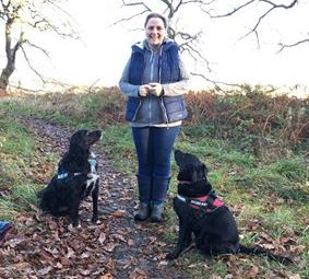 Dog training newcastle